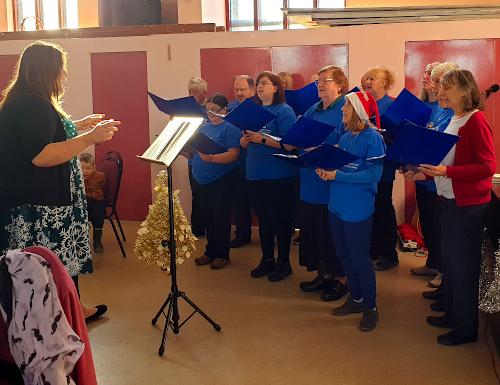 Choir CGS Fayre 2019