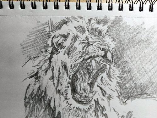 Week Starting 30th November – More drawing exercises