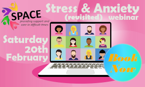 Webinar on Stress and Anxiety (Revisited) 20th Feb